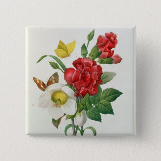 Christmas Rose, Helleborus niger Pinback Button