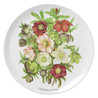 Christmas Rose Party Plates