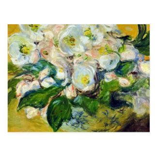 Christmas Roses - Claude Monet Postcards