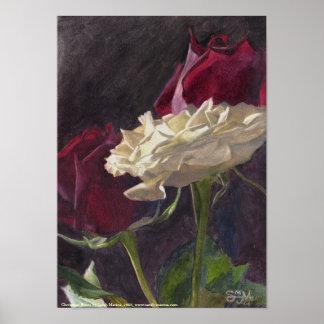 Christmas Roses: petite Poster