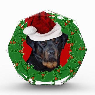 Christmas Rottweiler dog Award