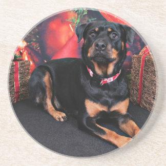 Christmas - Rottweiler - Nalani Beverage Coaster