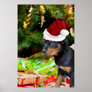 Christmas Rottweiler puppy Poster