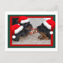Christmas Rottweilers: A Time of Joyous Giving Holiday Postcard
