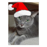Christmas Russian Blue Gray Cat Greeting Card
