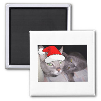 Christmas Russian Blue  Gray Cats Magnet