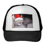 Christmas Russian Blue Gray Cats Mesh Hats