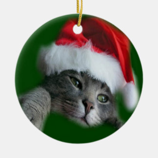 Christmas Santa cat ornament