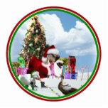 Christmas Santa Goose And Ducks Photo Sculptures