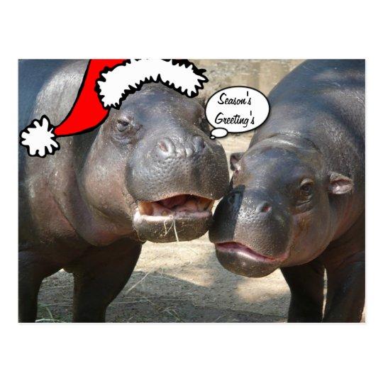 Christmas Santa Hippo postcard