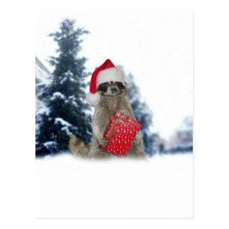 Christmas Santa Raccoon Bandit Postcard