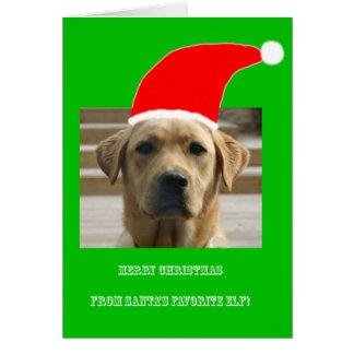 Christmas Santa's Favorite Elf 4Evan Card