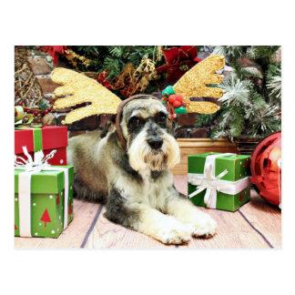 Christmas - Schnauzer - Apache Postcard