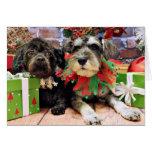 Christmas - Schnauzer Joey and ShihChon Oscar Greeting Cards