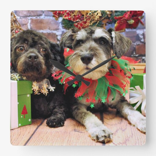 Christmas - Schnauzer Joey - ShihChon Oscar Wall Clocks