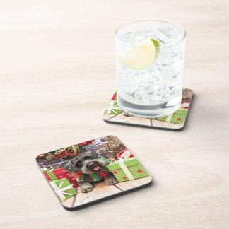 Christmas - Schnoodle - Dexter Coaster