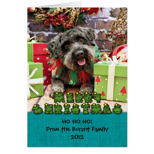 Christmas - Schnoodle - Dexter Greeting Card