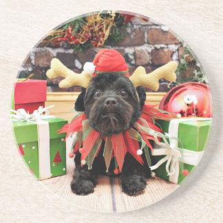 Christmas - Schnoodle - Otto Coaster