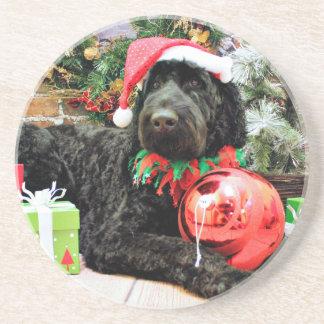 Christmas - Schnoodle - Zeus Drink Coasters