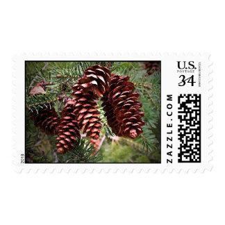 Christmas Seasonal Postcard Size Postage Stamps
