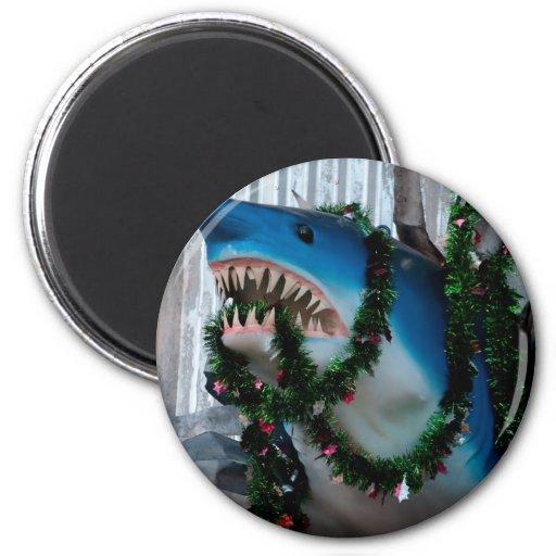 Christmas Shark magnet
