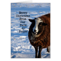 Christmas Sheep From Our Farm to Yours Card