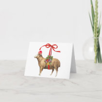 Christmas sheep holiday card