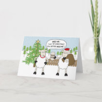 Christmas Sheep Humour Holiday Card
