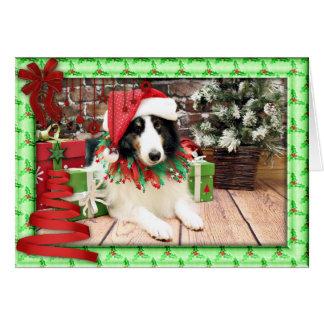 Christmas - Sheltie - Bandit Card