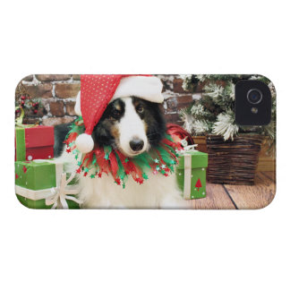 Christmas - Sheltie - Bandit Case-Mate iPhone 4 Case