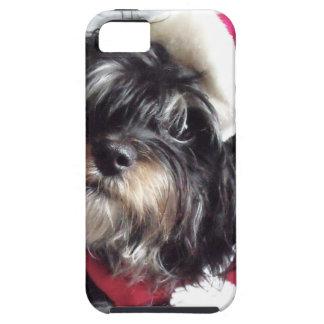 Christmas Shih Poo iPhone SE/5/5s Case