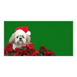 Christmas Shih Tzu Card