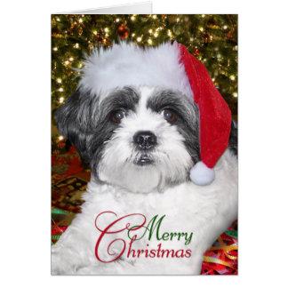 Christmas Shih Tzu Dog Greeting Card