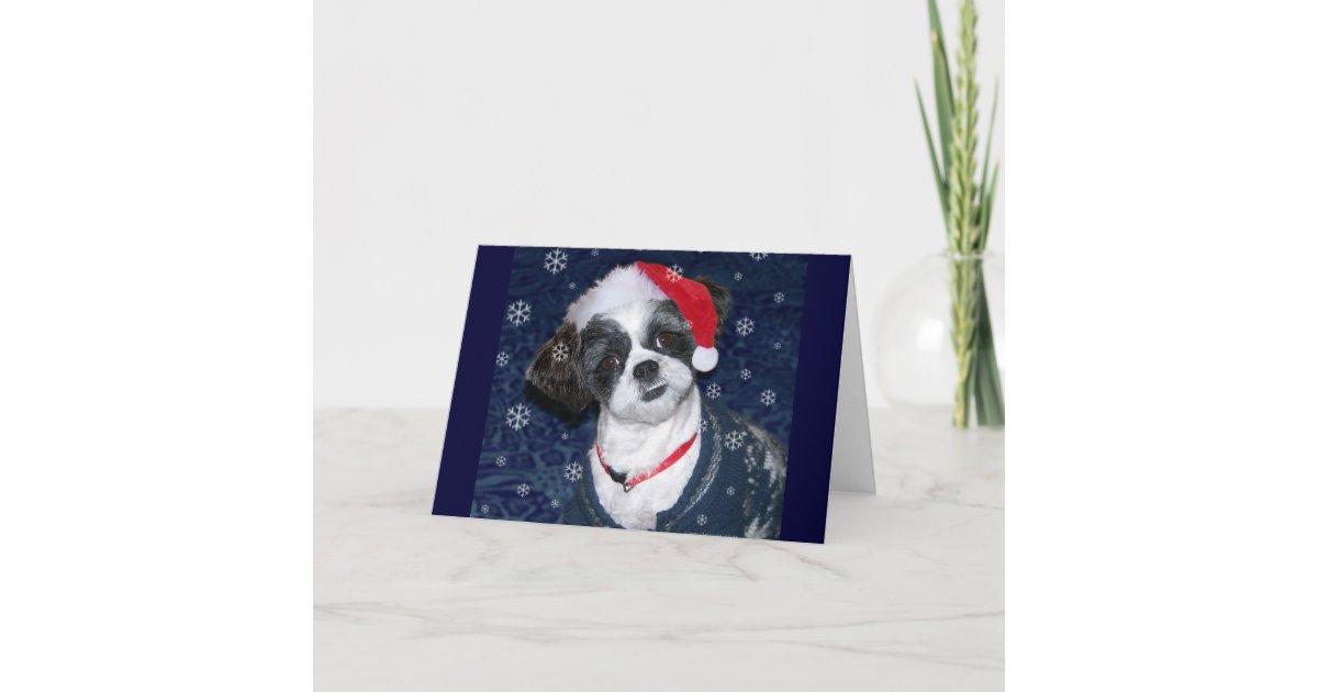 Christmas Shih Tzu Dog Holiday Card | Zazzle.com