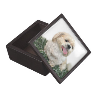 Christmas Shih Tzu Gift Box