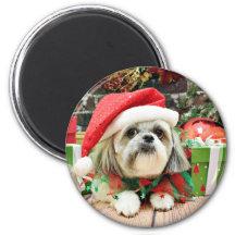 Christmas - Shih Tzu - Gizmo Fridge Magnet