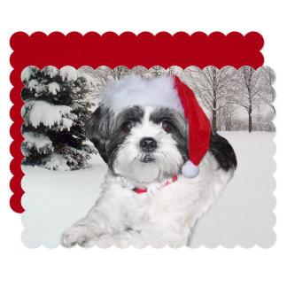 Christmas Shih Tzu in Snow Card