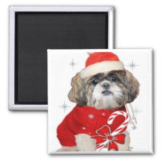 Christmas Shih Tzu Magnets