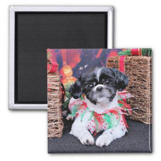 Christmas - Shih Tzu - Sadie Magnet