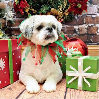 Christmas - Shih Tzu - Teddy Photo Sculptures