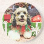 Christmas - Shih Tzu X - Baxter Coasters