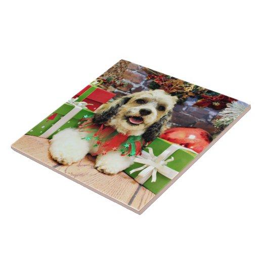 Christmas - Shih Tzu X - Baxter Tiles