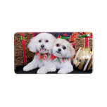 Christmas - Shihchon - Poochon -Newman and Wrigley Personalized Address Label