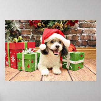 Christmas - ShihPoo - Max Posters