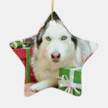 Christmas - Siberian Husky - Juliet Christmas Ornaments