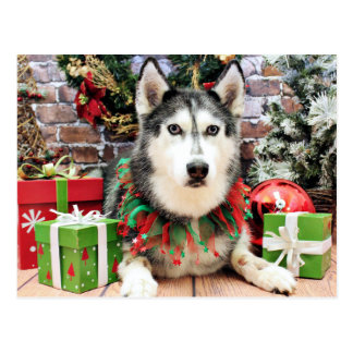 Christmas - Siberian Husky - Nika Postcard