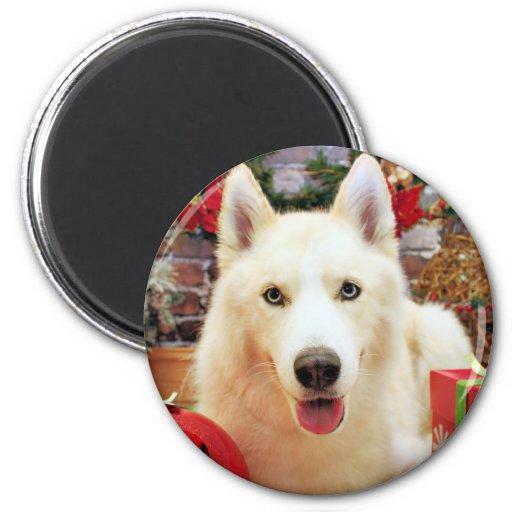 Christmas - Siberian Husky - Teagarden Portraits Fridge Magnets