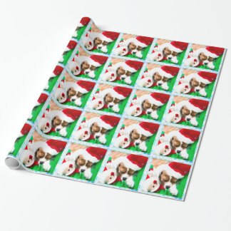 Christmas Sleeping Cavalier King Charles Puppy Wrapping Paper