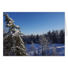 Christmas Snow Covered Trees In Winter Forest Card at Zazzle