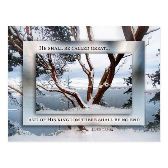 Christmas Snow over Bay Postcard